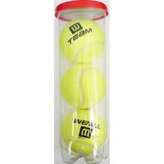 Wilson Practice Tennis Balls