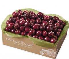 cherries bloods hammock groves  pany in delray beach   online store      rh   46495 us all biz