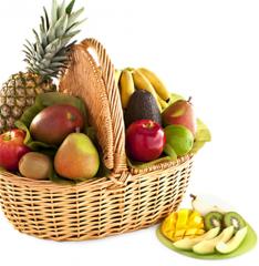fruit basket bloods hammock groves  pany in delray beach   online store      rh   46495 us all biz