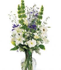 Flowers, Garden Essence