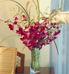 Dendrobium Orchid Vase