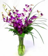 Dendrobia Bouquet