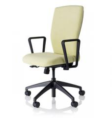 EWC Pro™ Mid-back Conference chair