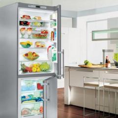 Freestanding Refrigerator & Freezer,