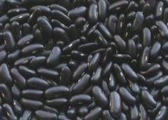 Black Kidney Bean (long shape)