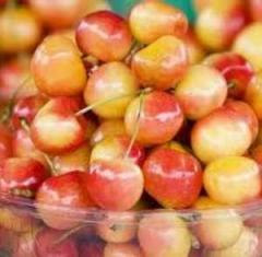 Rainier Cherries, 3lbs