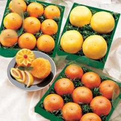 3 Varieties in 1 Gift (Oranges,  Grapefruit...