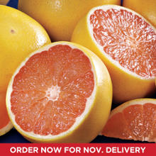 Ruby Red Grapefruit All-Time Favorite
