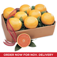 Ruby Red Grapefruit Grand Family Size