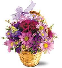 Flower Basket, Lavender Garden