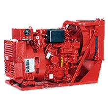 10.0 Btdar Industrial Generator