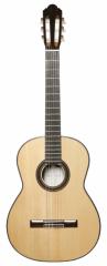 Augustine Prima Speciale Guitar
