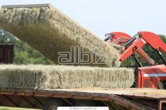 Hay making equipment