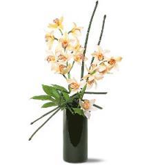 Artful Orchids