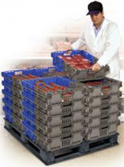 Food Processing & Distribution Containers