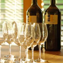 Vignoles Dessert Wine 2010