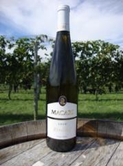2010 Riesling Wine