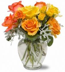 Butterscotch Roses TF-WEB6