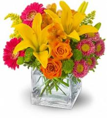 Teleflora's Summertime Splash Flowers