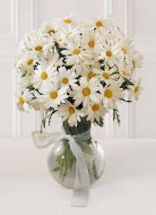 The FTD® Daisy Vase C12-3005
