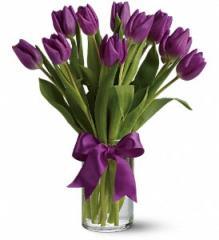 Passionate Purple Tulips Bouquet T148-2A