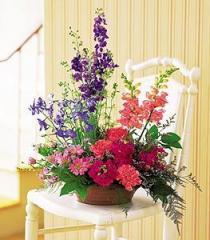 Garden Saucer Design Flowers