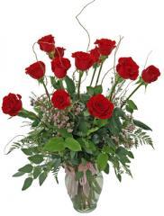 World's Greatest Dozen Red Rose Arrangement