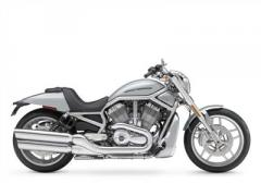 V-Rod® 10th Anniversary Edition