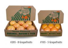 Texas Grande Grapefruit