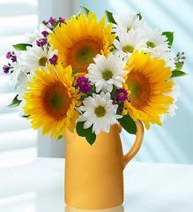 Summer Sunflower Medley