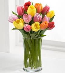 Rush of Color Assorted Tulip Bouquet - 15 Stems