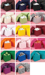 Colored Favor Boxes