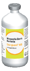 Ocu-Guard MB-1 Moraxella Bovis Bacterin