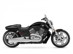 V-Rod Muscle motorcycle