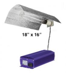 Electronic 250 Watt Grow Light System
