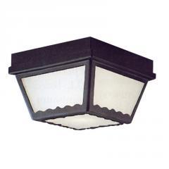 2-light Outdoor Wall Lantern in Black finish