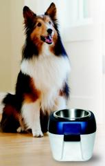 EZ Store - Raised Dog Bowl