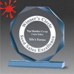 Acrylic Beveled Octagon Award