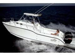 2010 Baha Cruisers 296 Catamaran Boat