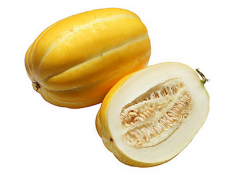 Fresh Korean Melon