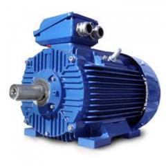 Elektrim High Efficiency IE2 Metric Motors