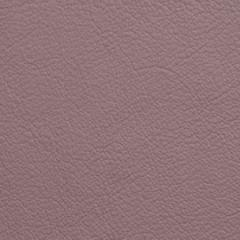 Showcase Eco™ Leather