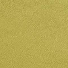 Davenport Leather