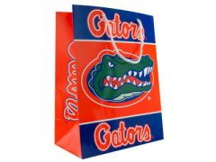 Gift Bag Medium NCAA