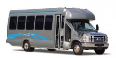Commercial Buses Starliner