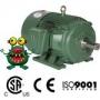2 HP Premium Efficiency Motor