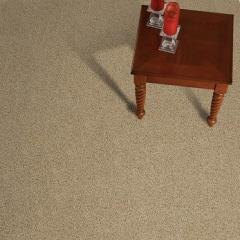 Stylish Carpet