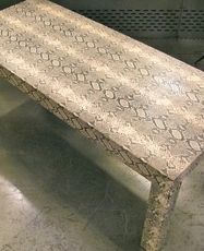 Snake Skin Coffee Table