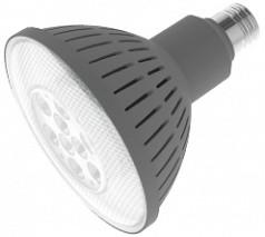 PAR38 LED Replacement Lamp