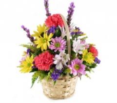 Mixed Bright Basket